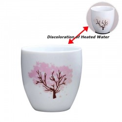Japanese - Sakura - Teacup - Color Changing - Ceramic