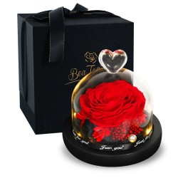Preserved eternal rose - glass box with light - Valentine's day / wedding gift