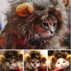 Furry Pet Costume Lion Mane Wig For Cat