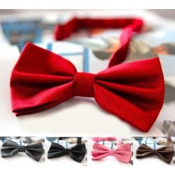 Colourful men's bow tie