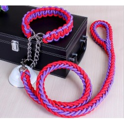 Strong Nylon Dog Pet Leash & Collar |