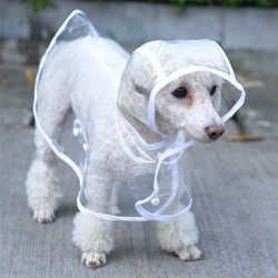 Gabardina transparente para perros