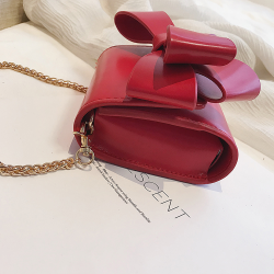 Small elegant bag with bow & chain