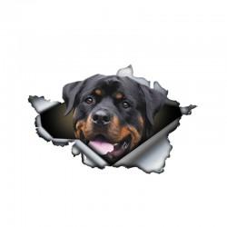 3D Rottweiler - vinyl car sticker - 13 * 8.4cm